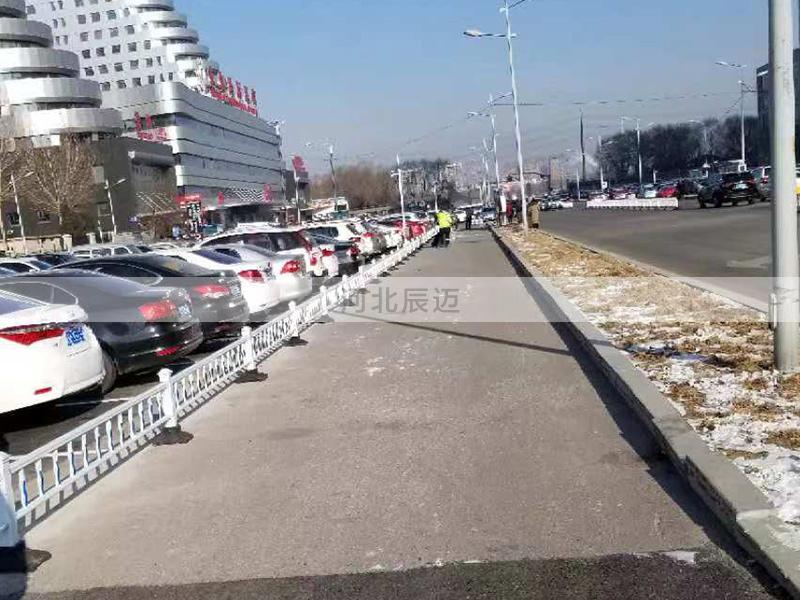 辽宁沈阳东北国际医院门前隔离带